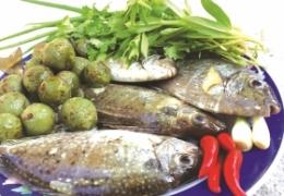Các loại cá có nhiều thủy ngân nhất, bệnh nhân vẩy nến nên biết