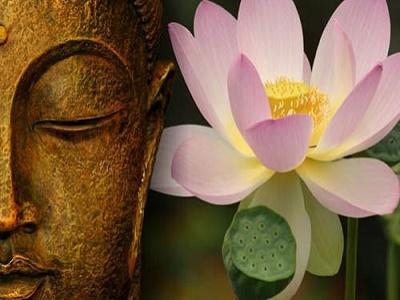 Để luôn thanh thản, an yên và hạnh phúc, học ngay chân lý sống của nhà Phật này